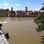 Donau Unterer Wöhrd & Ufer Southward