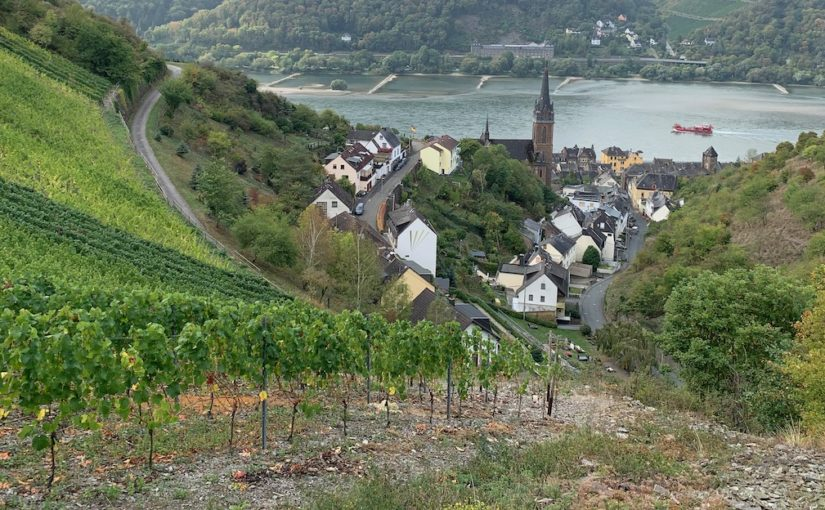 Fall 2020 Vacation — Part 2:  Rheingau